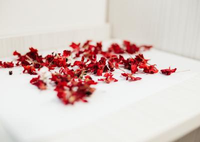 geranium_real_red_flower