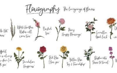 Jezik cvijeća